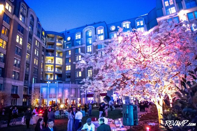 'Year Of The Horse' Chinese Zodiac Celebration Marks Mandarin Oriental D.C.'s 10th Anniversary